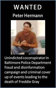 Peter Hermann - Wanted